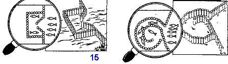 Самодельные ловушки для рыбы, загоны, садки, карманы, плотины, деревянные сети для ловли рыбы при выживании в аварийной ситуации, изготовление, загон и сбор рыбы