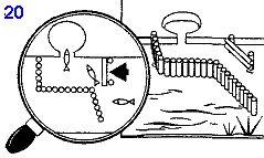 ловушка для рыбы