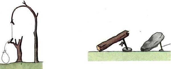 силки и ловушки
