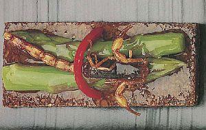 Употребление в пищу мяса пауков и скорпионов, блюда из пауков и скорпионов, экстремальная кухня