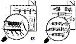 Самодельные блесны и искусственная наживка для рыбной ловли при выживании в аварийных условиях